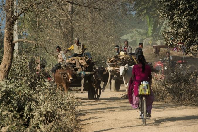 village-traffic-jam