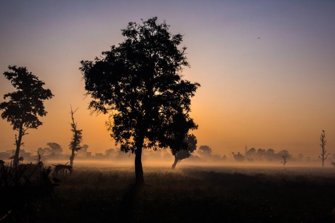 yoga-sunrise